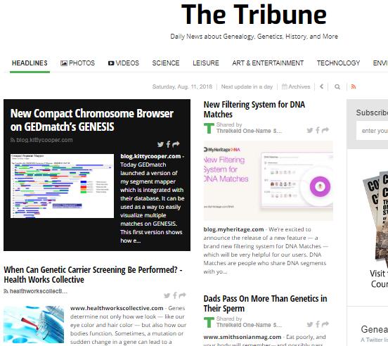 TheTribune.news